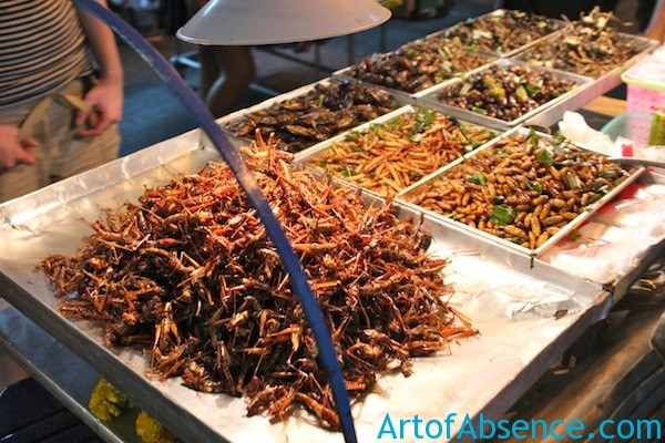 Deep Fried Bugs For Sale on Koh San Road