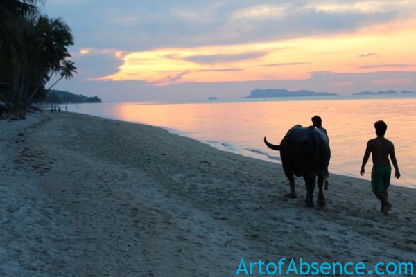 Koh Samui Sunset On The Beach