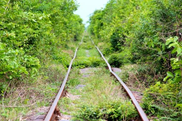 Bamboo Train Line